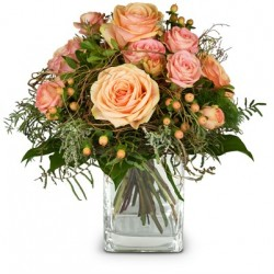 Délicates roses d'hiver