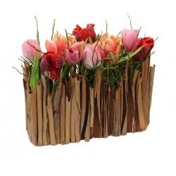 Elégant jardinet de tulipes