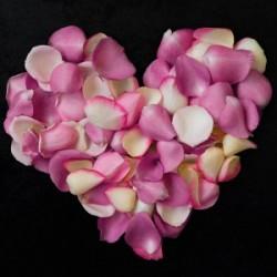 Carte Coeur de Rose